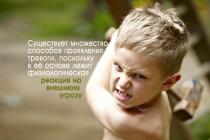 Як тривожність спричиняє агресію в дітей