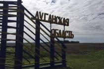 Содействие семейному устройству детей, которые не имеют родительской опеки и попечительства в Луганской области